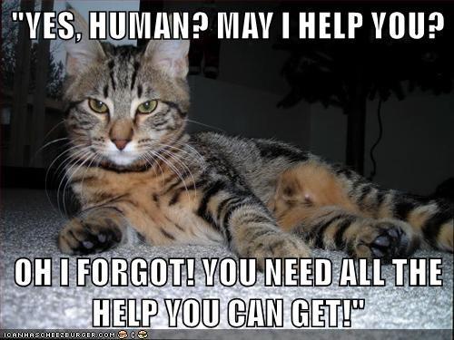 animals - 8467067904