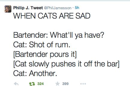 funny-twitter-pic-cat-bar-sad