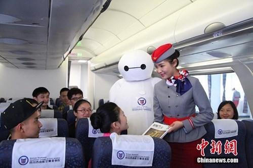 baymax flight attendant