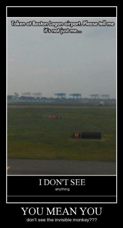 airport idiots funny boston - 8467622400