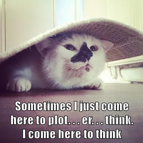 animals plan plot evil Cats - 8467909120