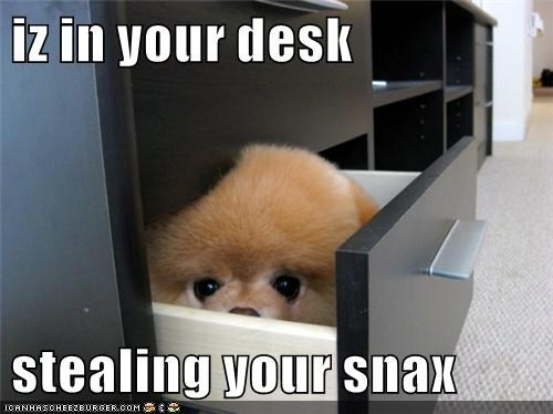 iz in your desk stealing your snax