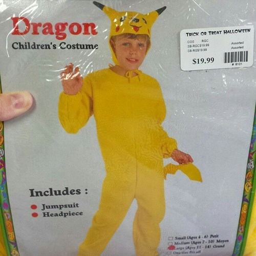 pokemon memes pikachu dragon costume