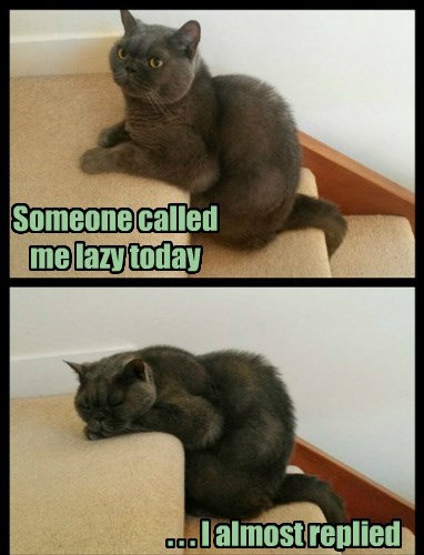 Someone called me lazy today . . . I almost replied