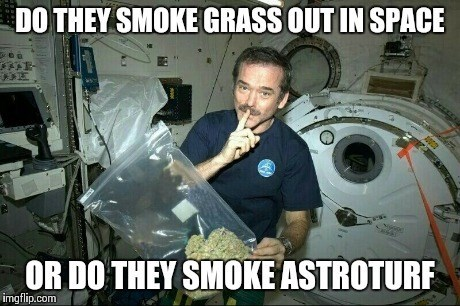 that's a lot of weed for chris hadfield