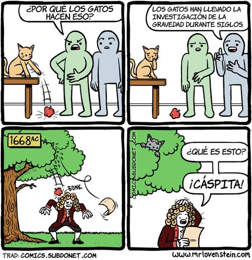 gatos cientificos
