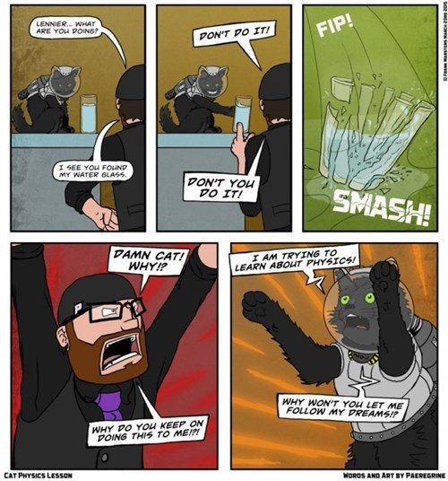 funny-web-comics-the-explanation-why-some-cats-push-things-around