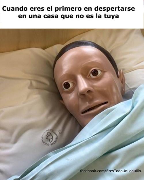 despertarse en la cama que no es de uno