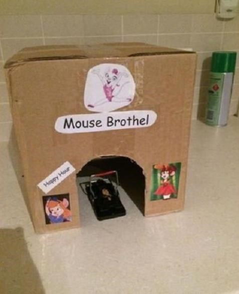 epic win-pic-mouse-trap