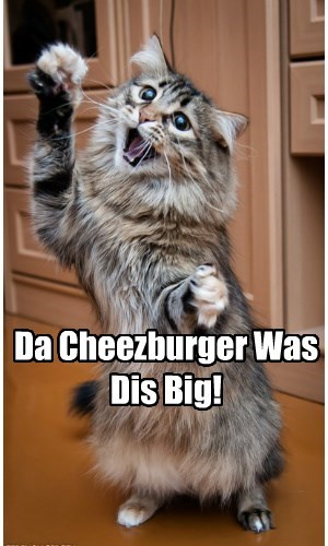 Da Cheezburger Was Dis Big!