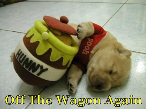 wagon,dogs,tired,honey,winnie the pooh