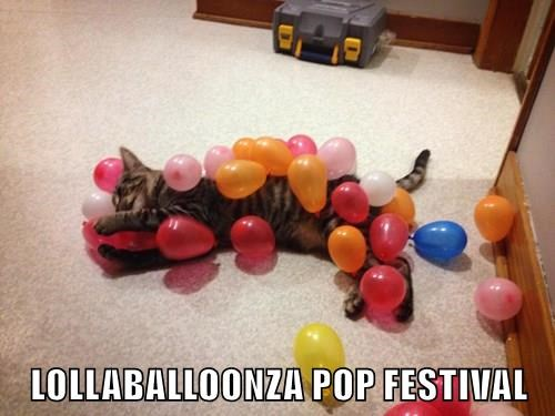 animals pop puns festival Cats balloon