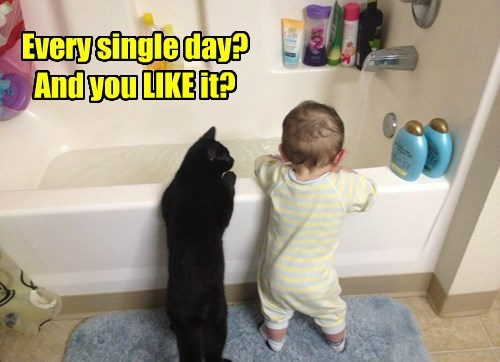 cat toddler bath caption - 8470042368