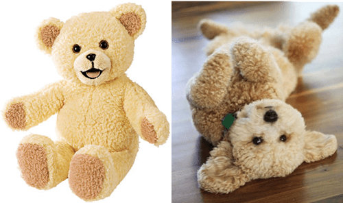 This dog and Snuggle Bear look quite similar ...