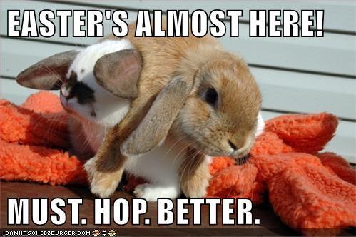 animals easter spring FAIL hop bunny - 8470373376