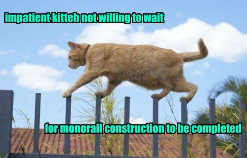 impatient tabby monorail cat Cats - 8470674688