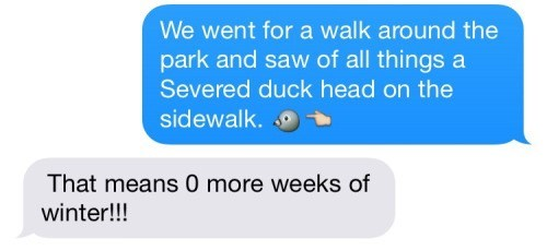 funny-texting-pic-spring-duck