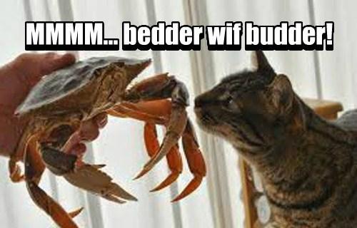 MMMM... bedder wif budder! MMMM... bedder wif budder!