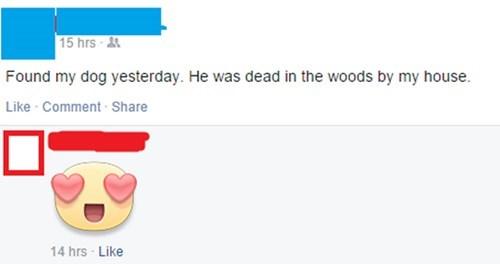 funny-facebook-pic-dog-awkward