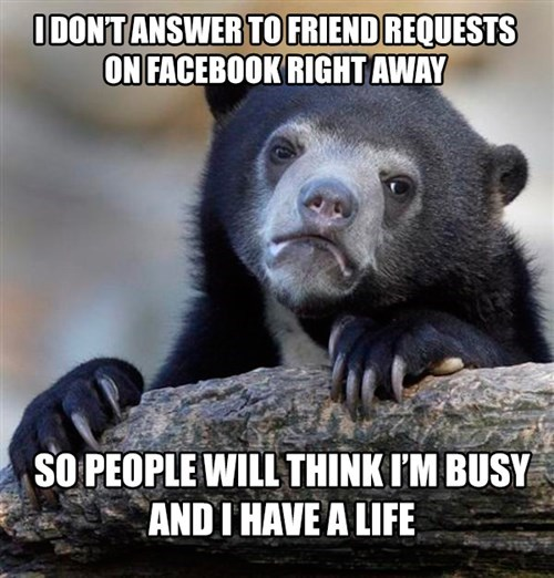 friend requests,facebook,Confession Bear