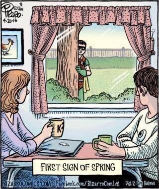 spring robin comics - 8472879360