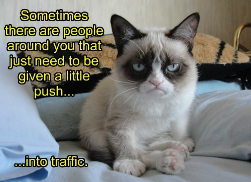 Sometimes there are people around you that just need to be given a little push... ...into traffic.