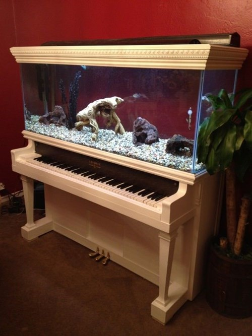 epic-win-pic-piano-design-aquarium