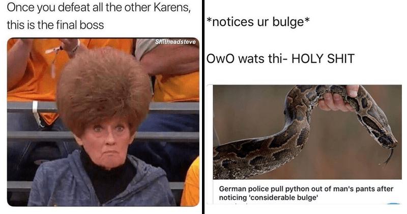 Funny random memes.