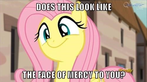 face,mercy,fluttershy