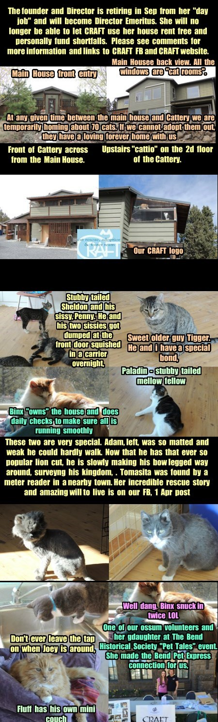 Meet CRAFT (Cat Rescue, Adoption and Foster Team).  The only all volunteer, non-profit, privately funded true No Kill shelter In Bend, OR