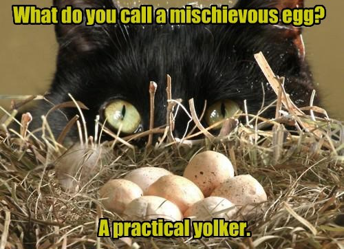What do you call a mischievous egg? A practical yolker.