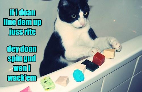 Cats jerk knock over plan - 8473936896