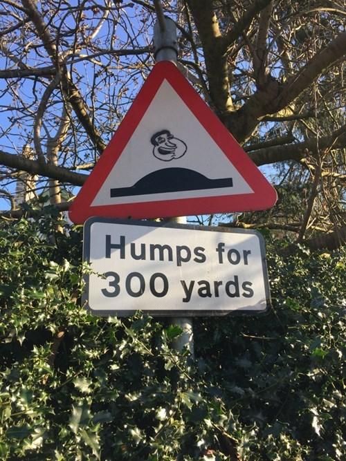 funny-sign-pic-win-quagmire
