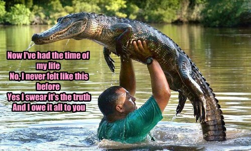 Music alligator wtf lyrics dirty dancing dance - 8474720768
