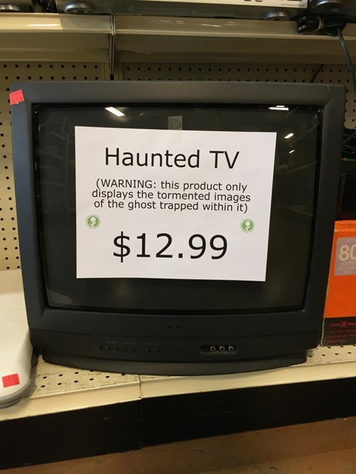 funny-prank-pic-obvious-plant-ghost-tv