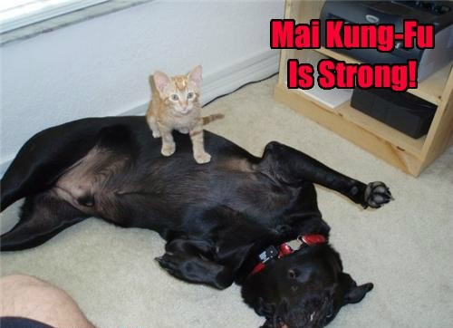 Mai Kung-Fu Is Strong!