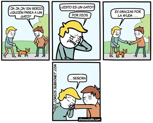 Sacar el gato