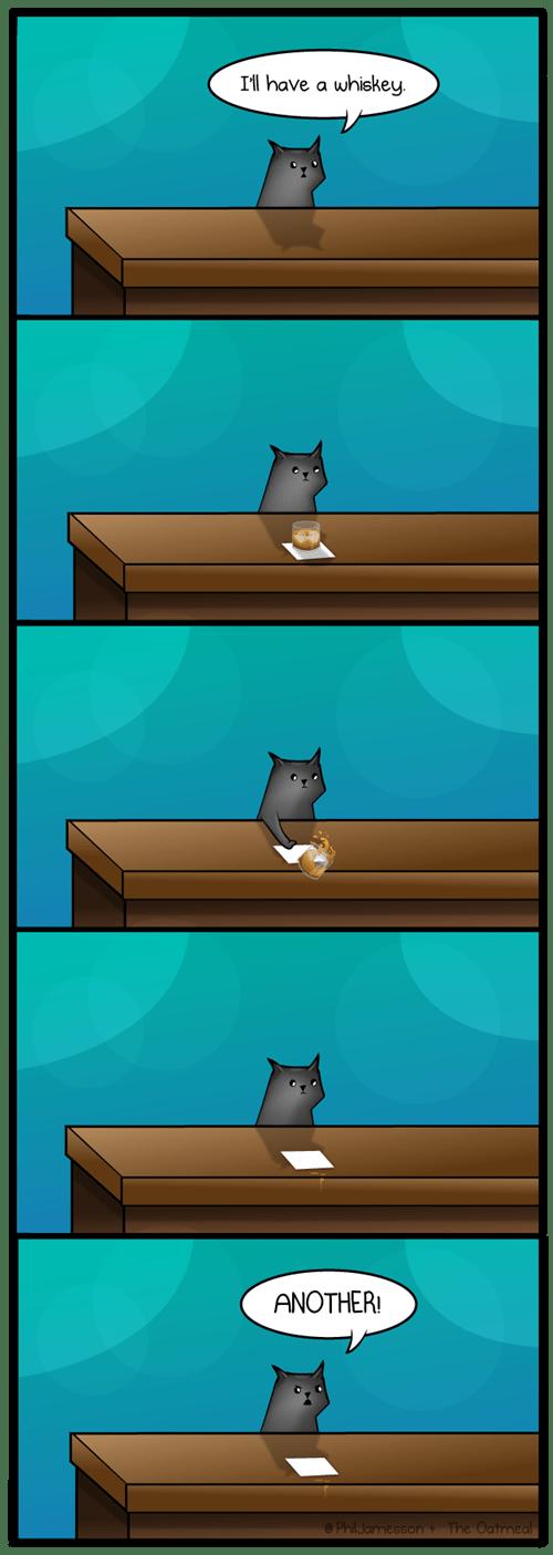 A Cat Walks Into A Bar By The Oatmeal Web Comics 4koma Comic