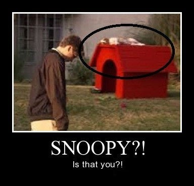 snoopy arrested development funny