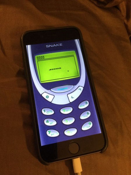 funny-phone-pic-nokia-snake