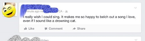 whoops,singing,word choice,failbook
