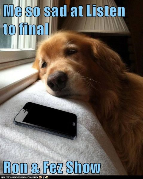 animals - 8476282880