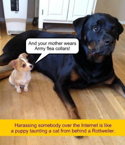 dogs bully the internets puppy true story trolls - 8476365568