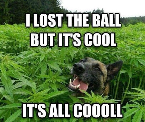 he lost the ball, but the weed helps