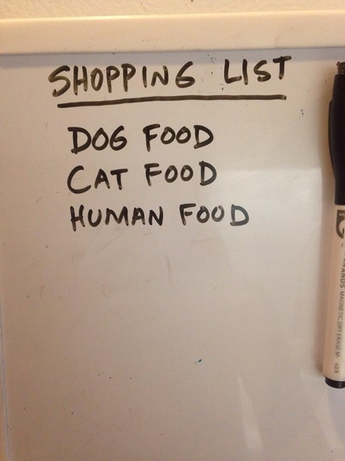funny-win-pic-grocery-shopping-list
