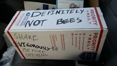 funny-win-pic-special-delivery