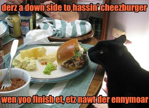 cheezburger,black cats,true story,noms,Cats