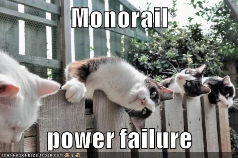 animals FAIL monorail cat broken Cats power