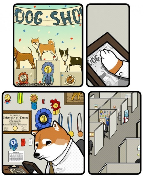 funny-web-comics-doge-as-they-get-old