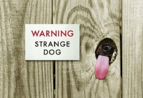 warning dogs tongue weird